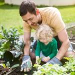 Gardening-iStock-Photo