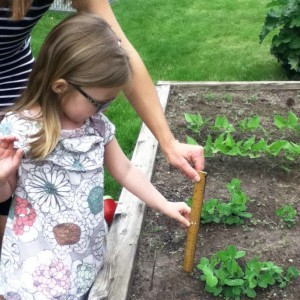 STEM in Garden